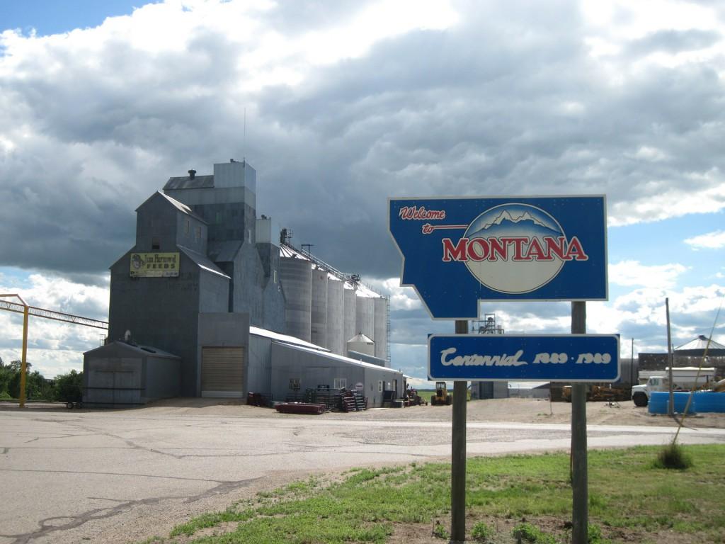 debt settlement in montana